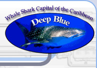 Deep Blue Divers - Technical Diving Utila Honduras,Tec courses in the Caribbean